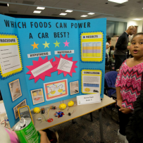 12th Annual Greene Scholars Program Science Fair
